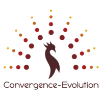 Convergence-Evolution_LOGO-COULEUR