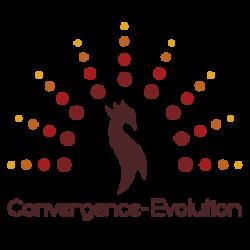 Convergence-Evolution_LOGO COULEUR